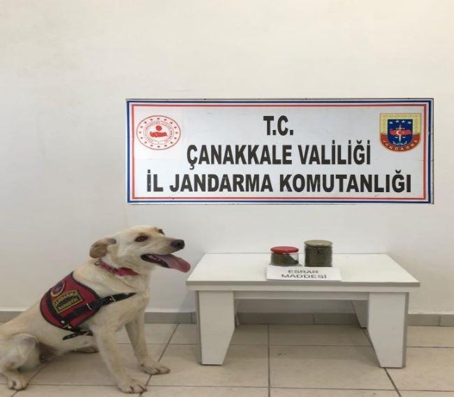 Jandarma uyuşturucu operasyonları devam ediyor: 7 tutuklama