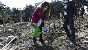 8 Mart kapsamında fidanlar toprakla buluştu