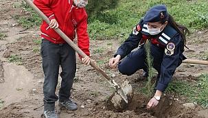 Çocuklar, jandarma ekipleriyle fidan dikti