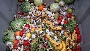 Gıda israfında ürküten boyut