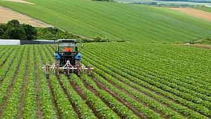 Tarım-ÜFE yıllık yüzde 21,32, aylık yüzde 2,61 arttı