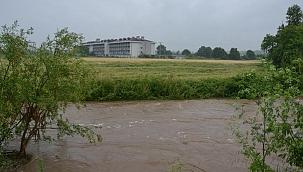 9 koyun yağmur sularına kapıldı