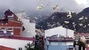 Fırtına nedeniyle çatılar uçtu