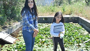 İki kız kardeş nilüfer çiçeklerine özenle bakıyor