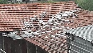 Yenice'de dolu tarım ürünlerine zarar verdi
