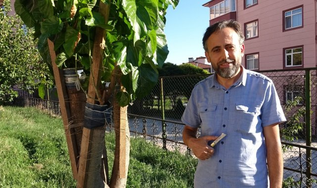 İmam 20 yıldır doğada gördüğü meyve ağaçlarını aşılıyor